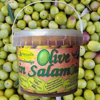 Olive in salamoia naturale origine Gonnosfanadiga, Sardegna