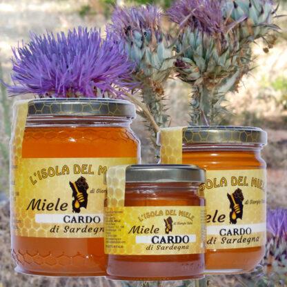 Miele di cardo italiano della sardegna